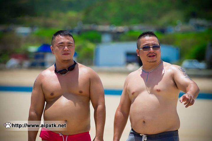 中年胖熊:福隆海滩熊影!