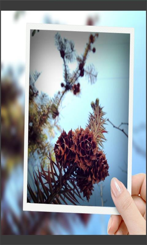 趣拍玩图照相机-应用截图