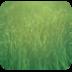 护眼绿-91桌面主题壁纸(美化版)