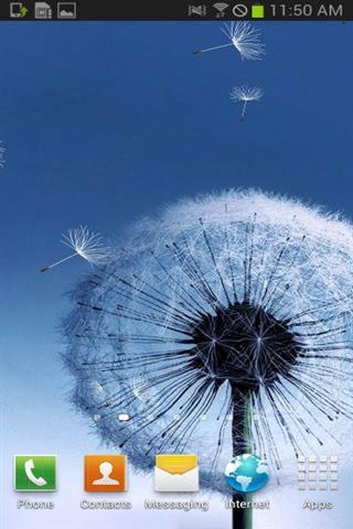 蒲公英壁纸 GalaxyS3 S4 Dandelion FREE LWP