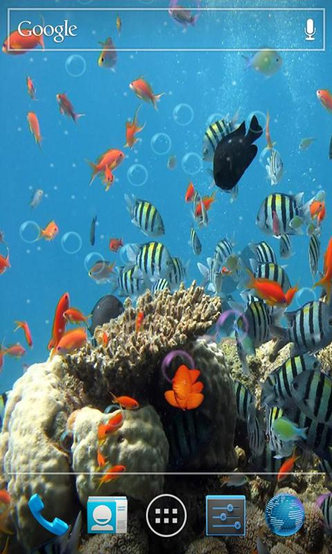 3D海底世界动态壁纸 個人化 App-癮科技App