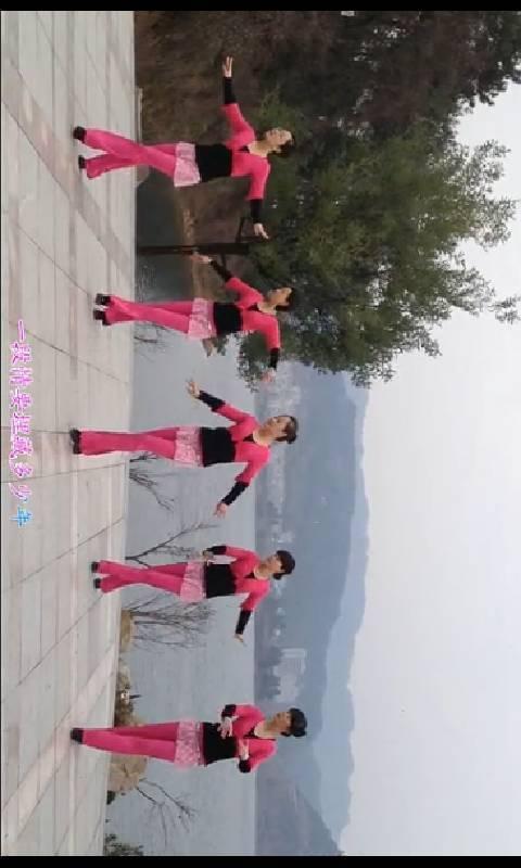 玩免費生活APP|下載广场舞视频教程 app不用錢|硬是要APP