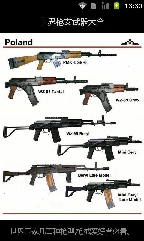 世界枪支武器大全